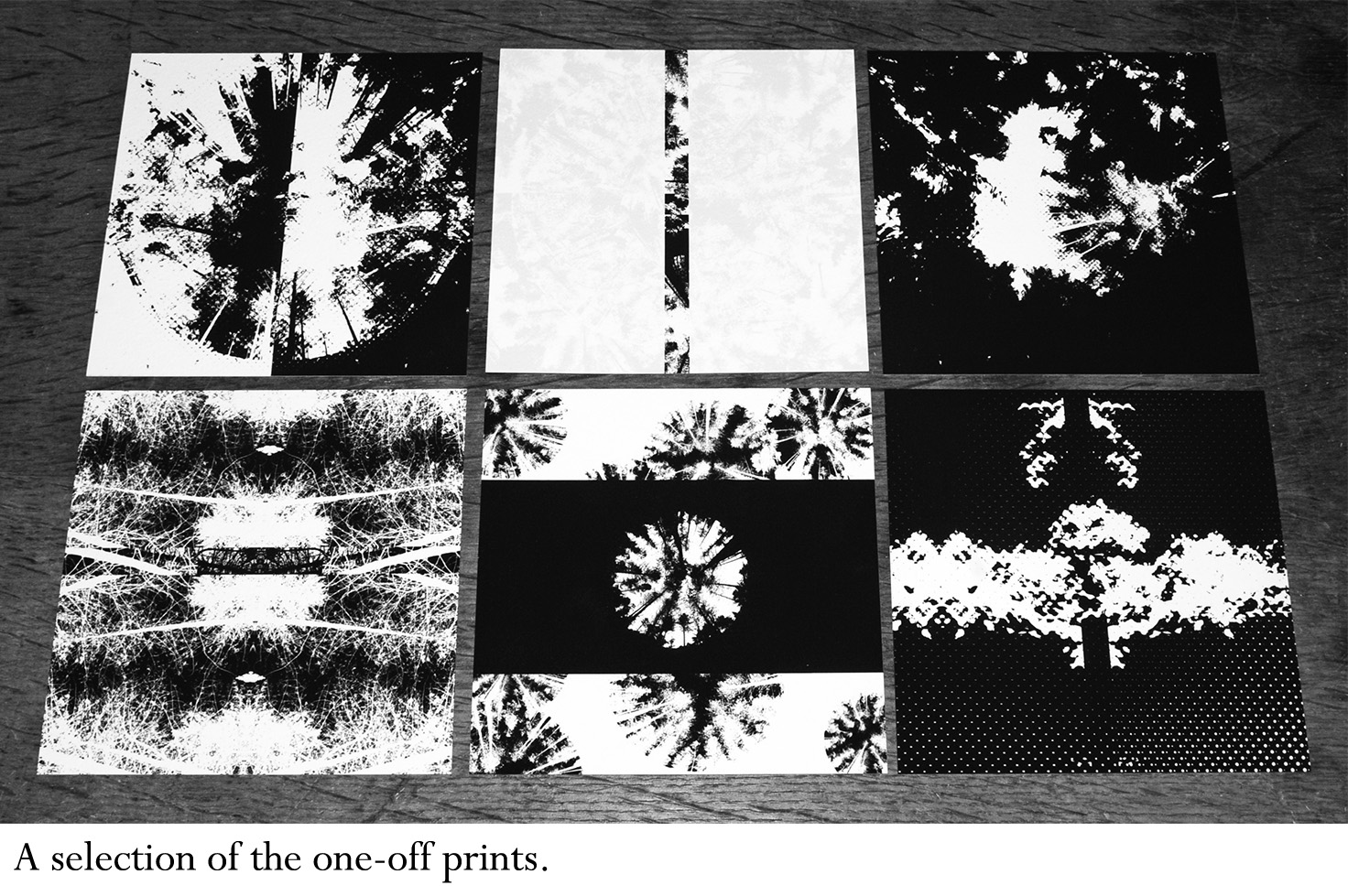 the-forest-the-wald-night-edition-one-off-prints-a-year-in-the-country-1-with-text