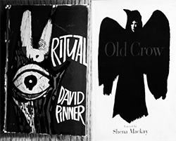 Ritual-David-Pinner-Old Crow-Shena Mackay-Finders-Keepers-Records-Bob-Stanley-A-Year-In-The-Country
