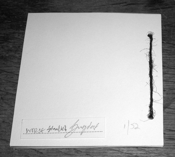 Hand of Stabs-Black-Veined White-back of Night Edition booklet-A Year In The Country