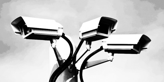 CCTV-surveillance cameras-1-A Year In The Country