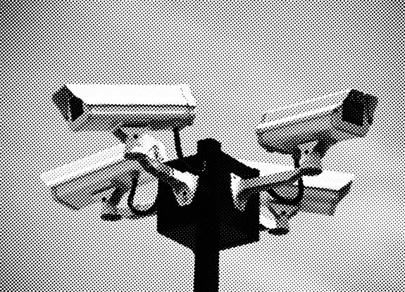 CCTV-surveillance cameras-7-A Year In The Country