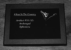 Artifact-51-250-Archetypal-Ephemera-box-A-Year-In-The-Country