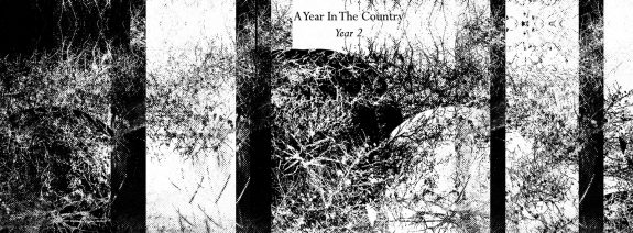 A Year In The Country-Year 2-Fractures 2