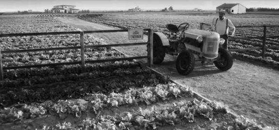 Farm image-1
