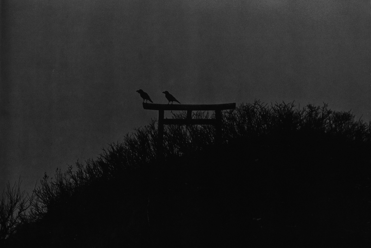 Masahisa Fukase-The Solitude Of Ravens-A Year In The Country-3