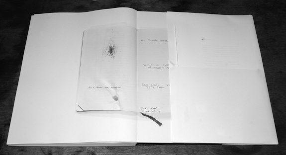 The Meadow-Barbara Bosworth-Margot Anne Kelley-Radius Books-1