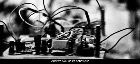 Klaus-Peter Zauner-The Creeping Garden-film documentary 2014-1