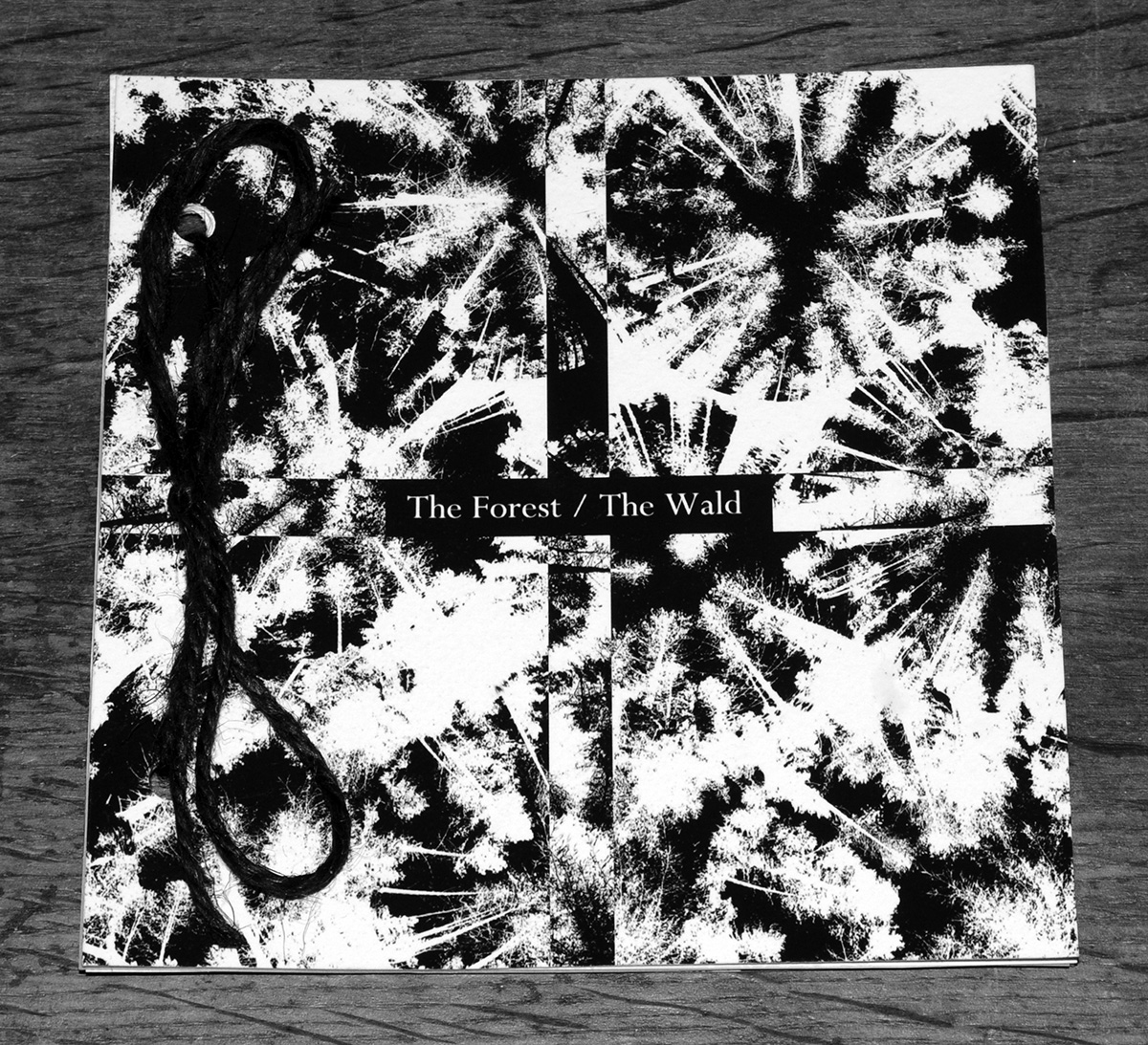 the-forest-the-wald-night-edition-booklet-a-year-in-the-country