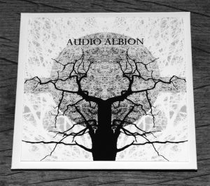 Audio Albion-Dawn Light Edition-front-A Year In The Country