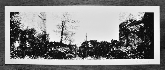 Artifact #1/52: Transference and Transmissions Print from A Year In The Country