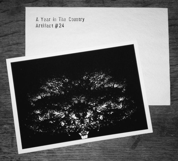 Artifact 24-Pastoral Phantasmagoria print-A Year In The Country-lighter
