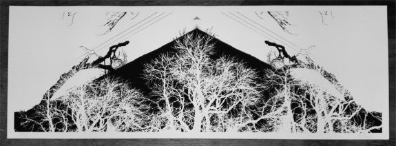 Artifact 30-Dendronic Geometries-print-A Year In The Country