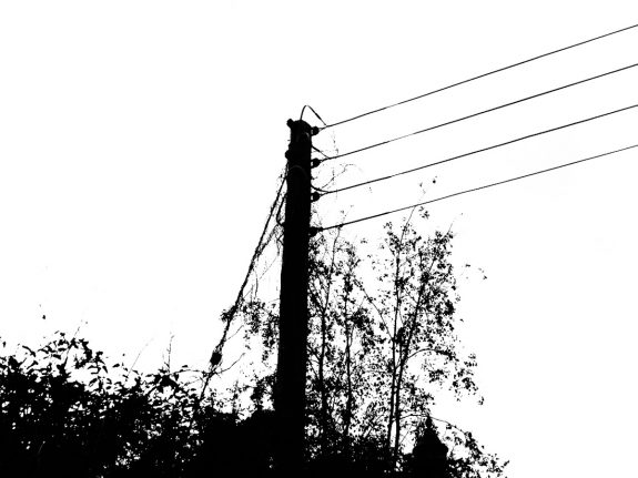 Telegraph Poles and Electric Pylons-A Year In The Country-4