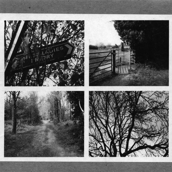 Haunted Woodland-Wayside and Woodland-A Year In The Country