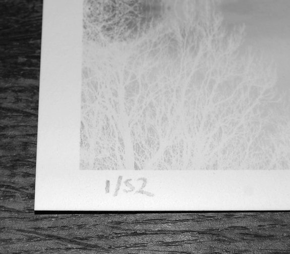 Artifact 50-Greenwood Threshold archival print-numbering-A Year In The Country