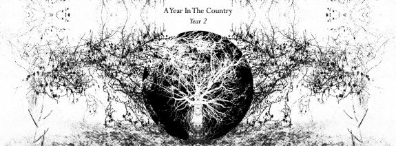 A Year In The Country-Year 2