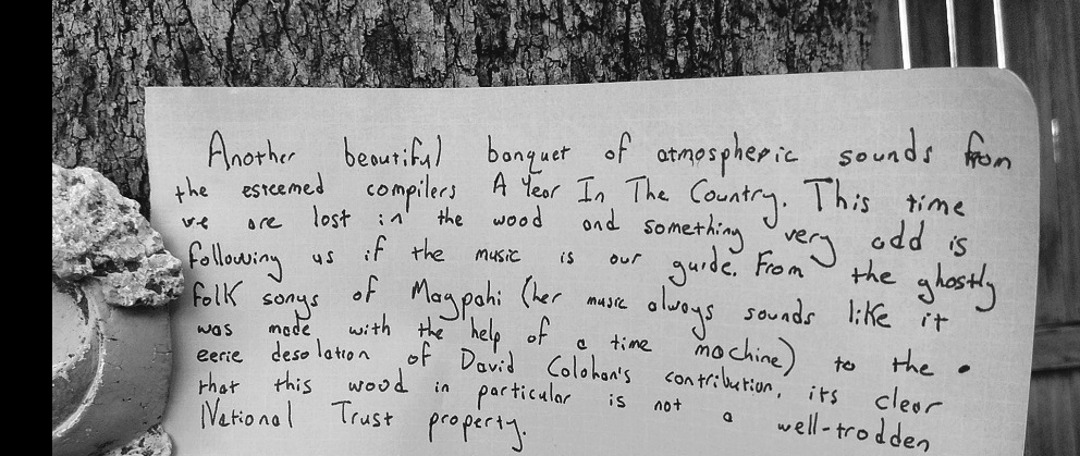 Was Ist Das handwritten review-The Forest The Wald-A Year In The Country