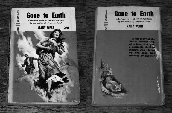 Gone To Earth-Mary Webb-Four Square Books film cover-2