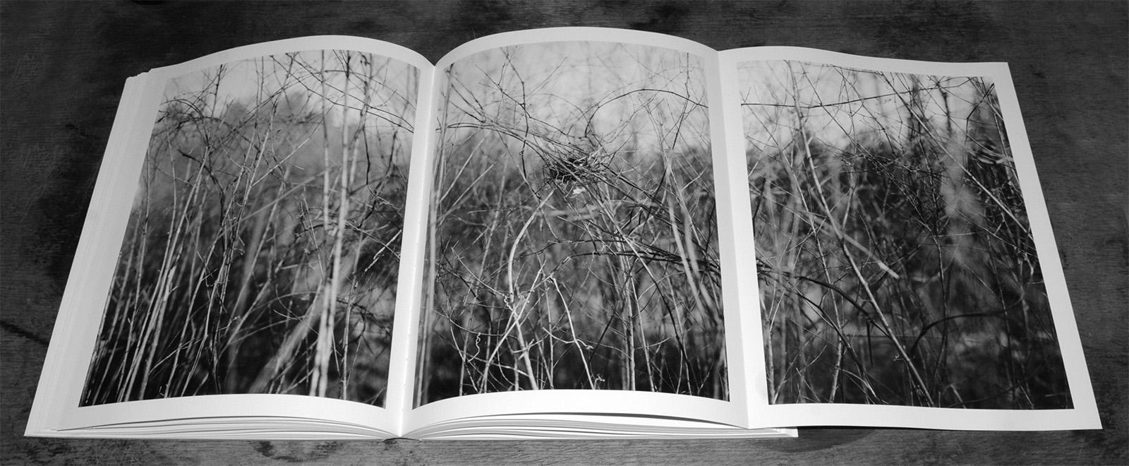 Meadow Bosworth Nude Photos 24