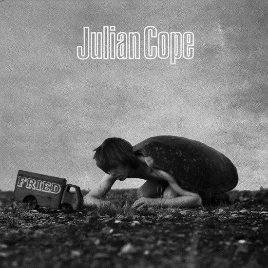 Julian Cope-Fried-album cover art